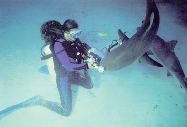 AQUAWOMAN FILMING SHARKS ~ aquawoman-id#-EL001